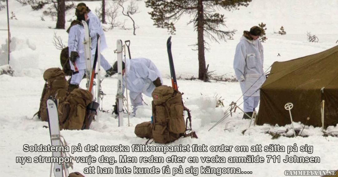 Ombyte förnöjer. Militär humor om norska soldater.